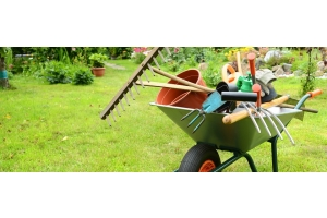 A guide to gardening tools
